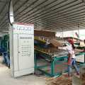 Roller Type Veneer Dryer Machinery