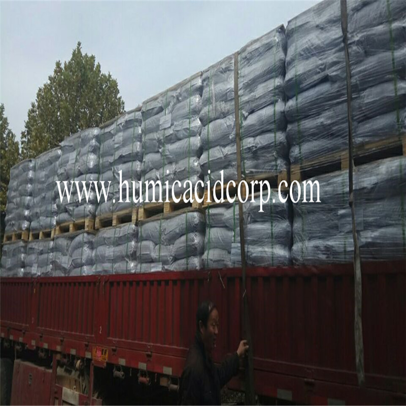 Humic acid powder granule leonardite fertilizer