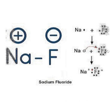 sodium fluoride is poison