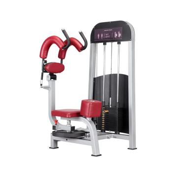Customized for China Heavy Duty Gym Machine,Hotel Gym Device Home Gym Equipment Manufacturer High Quality Gym Equipment Rotary Torso Machine export to Portugal Factories