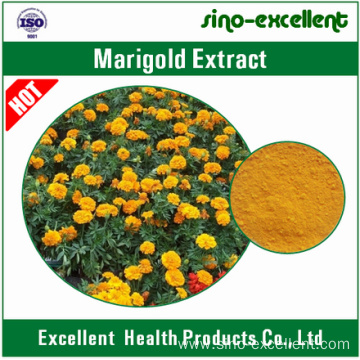 Marigold Extract Lutein powder
