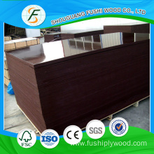 Good Quality for Film Faced Plywood 18 mm Brown Film Faced Plywood export to Puerto Rico Manufacturer