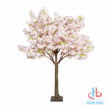 Colorful Cherry Blossom Tree