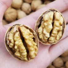 185 walnut kernel  80% haves Extra light/light