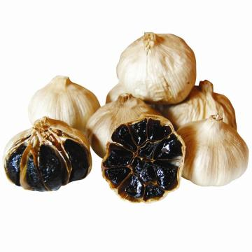Good Quality Black Garlic From Fermentation