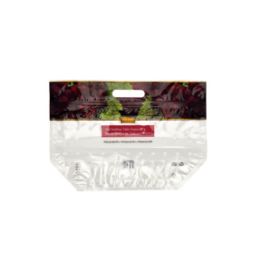 Fruit Packaging Zip Slider Bag with handle