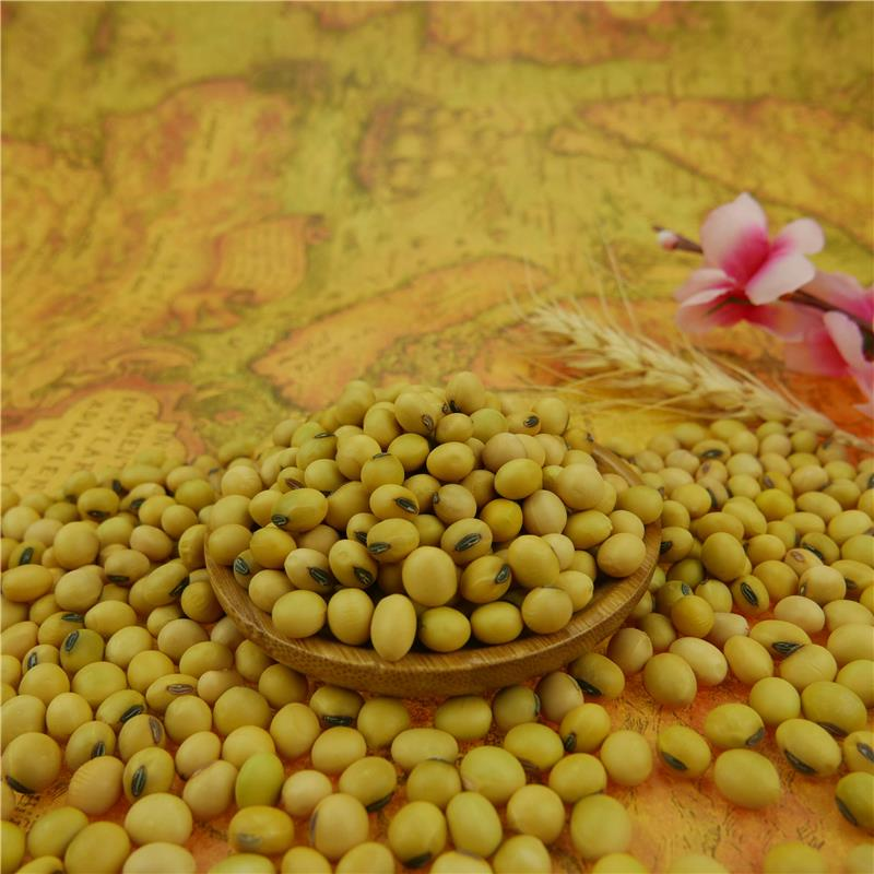 Soybean 6-8mm on sale
