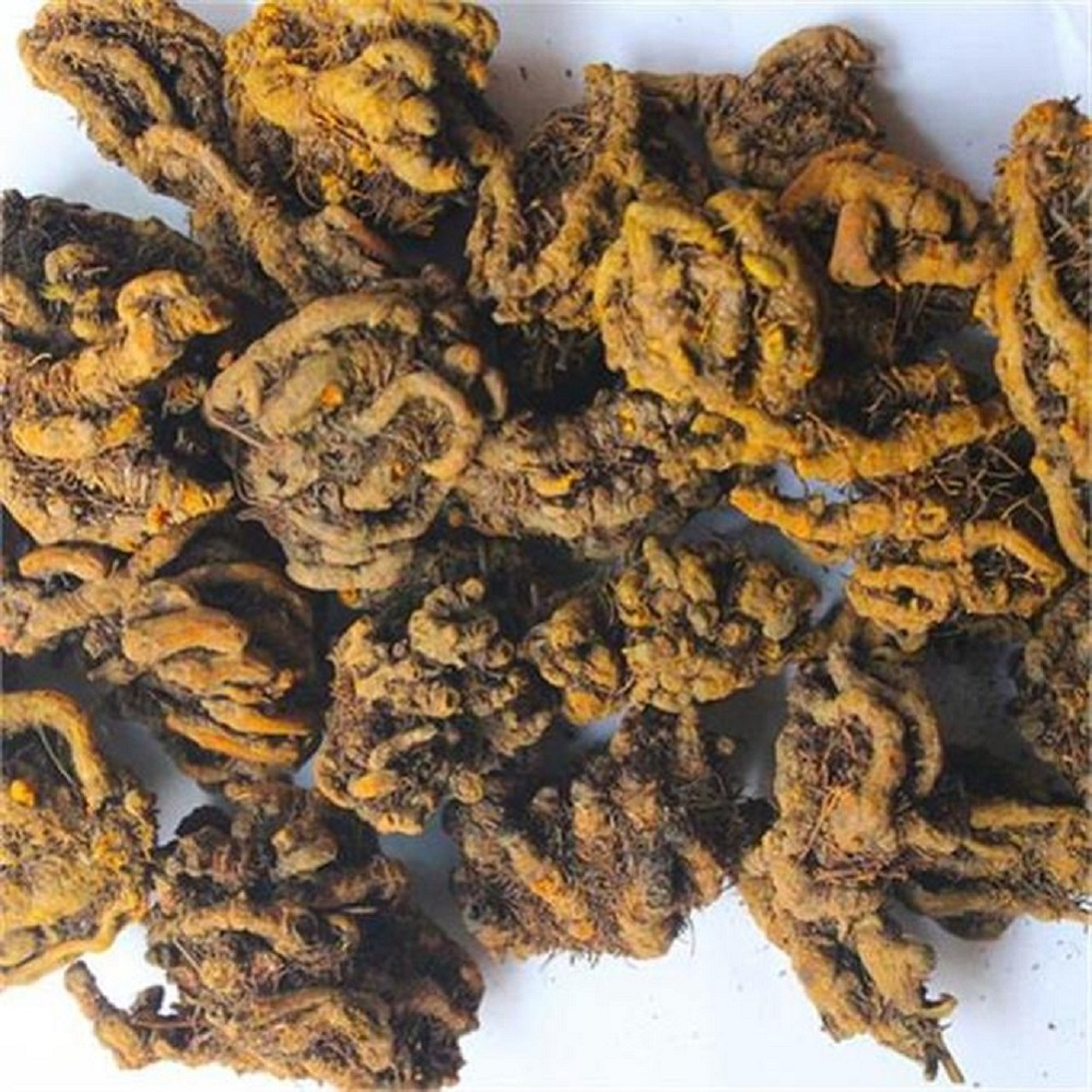 Huanglian Single Branch String