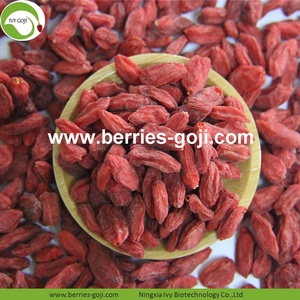 Factory Supply Healthy  Nutrition Natural Lycium Chinense