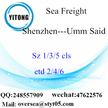 Shenzhen Port Sea Freight Shipping To Umm Said