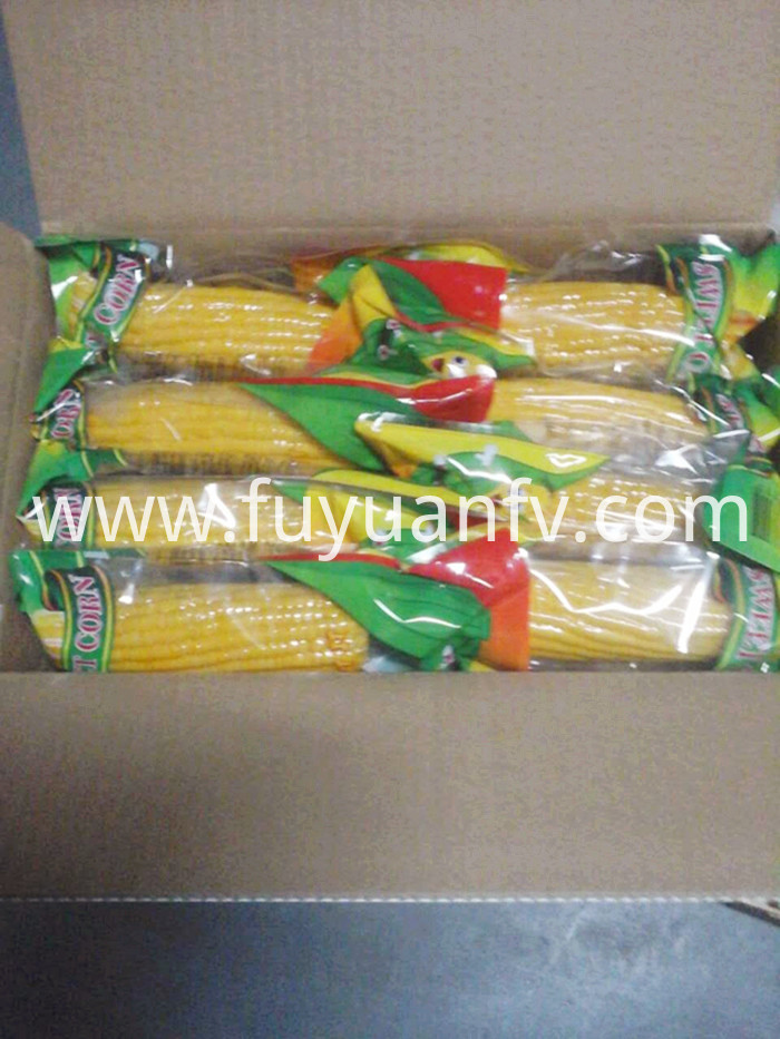 sweet corn package