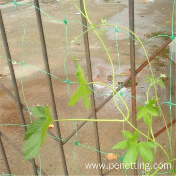 Plastic Supports For Climbing Plants