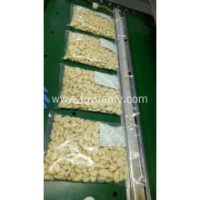 Supply for Bulk Fresh Peeled Garlic Fresh Peeled Jinxiang Garlic export to Seychelles Exporter