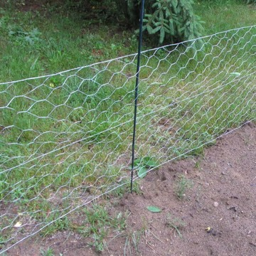 Black Vinyl Coated Chicken Wire Netting