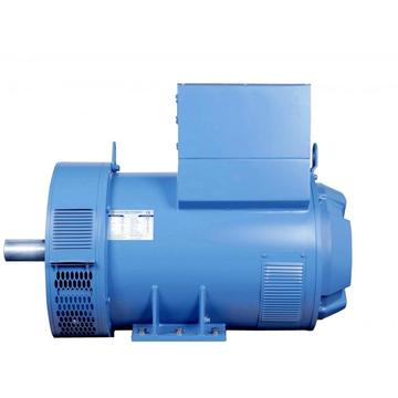 High Efficient Blue Color Marine A.C Alternator
