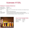 Xylanase for alcohol industry