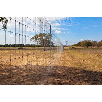 High tensile field fence/Farm filed fence