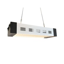 300W Professional LED Grow Light for Plant Factory