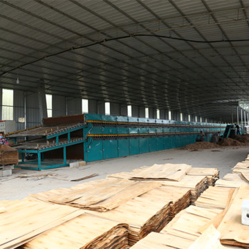New Core Roller Veneer Drying Machine