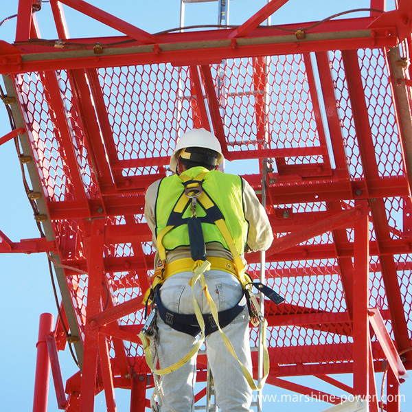 ts-series-rtr-tower-safety-climb