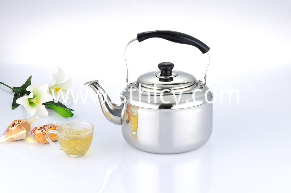 Best Stainless Steel Water Kettle