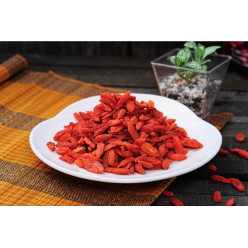 Frozen Dried  Ningxia or Qinghai Goji Berry