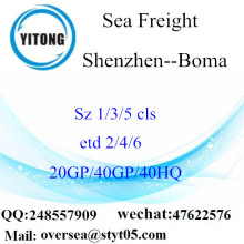 Shenzhen Port Sea Freight Shipping To Boma