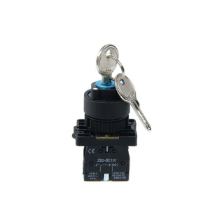 XB2 EG Series Pushbutton Switches