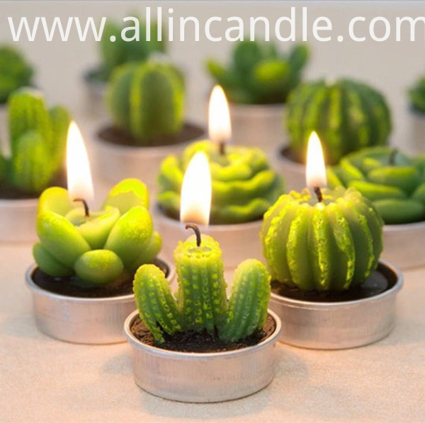 Cactus Candle 5