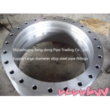 Large Diameter Steel Forged Weld Neck Flange