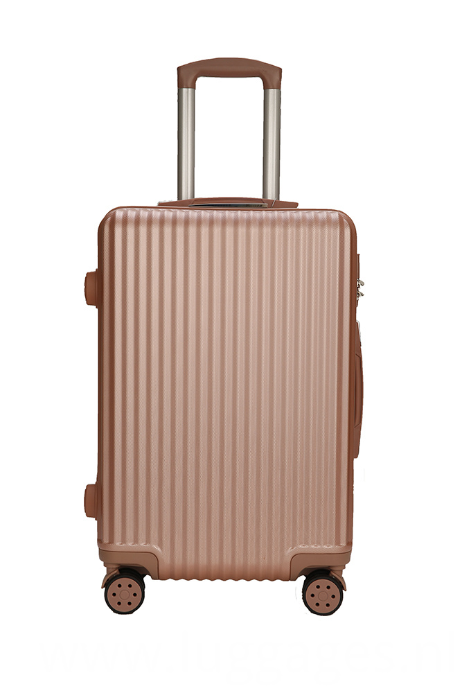 Fashion Stripe Luggage Case