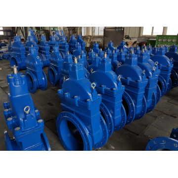 Resilient Seated Wedge Gate Valve