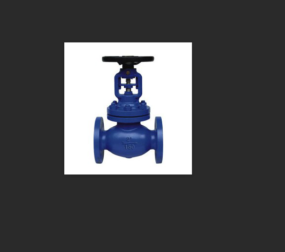 WCB Flanged Bellows Cast Steel Globe Valve