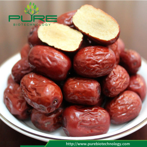 Hot sale no seed red date/ seedless jujube