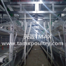 Chicken Cages for Layer