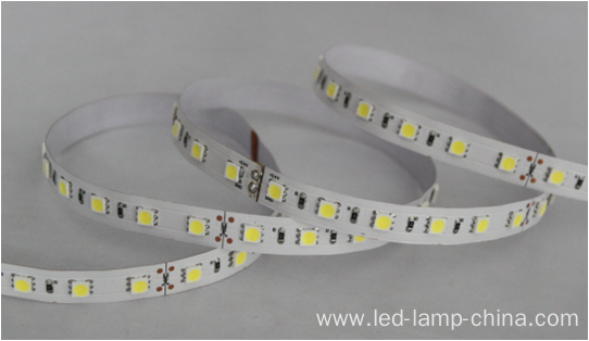 24V 5050SMD Flexible LED Strip