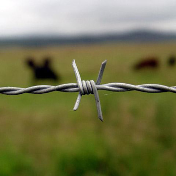 barbed wire fence design