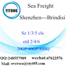Shenzhen Port Sea Freight Shipping To Brindisi
