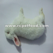 Frozen rabbit for snake for reptile food