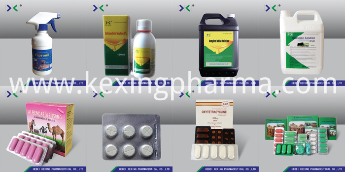 Animal Povidone Iodine Solution
