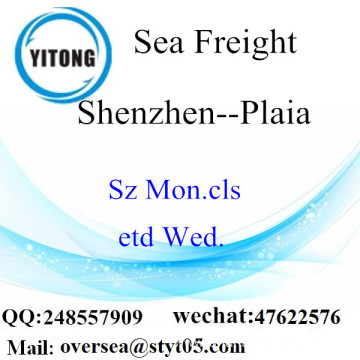 Shenzhen Port LCL Consolidation To Plaia