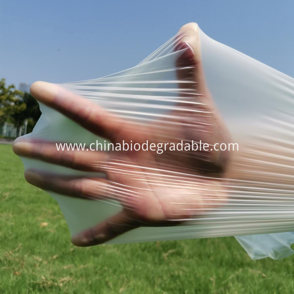 Disposable Compostable Garbage Plastic Bag