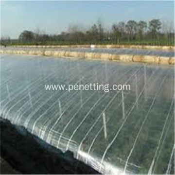 Commercial Tunnel Greenhouse Film for Tomato Planting