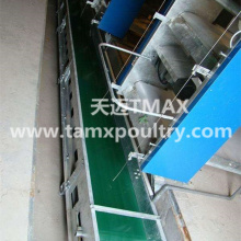 Manure Removal System for Poultry Cages