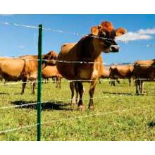 Uesed PVC coated galvanized deer fence farm