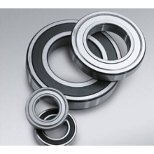 Single Row Deep Groove Ball Bearing (6040)