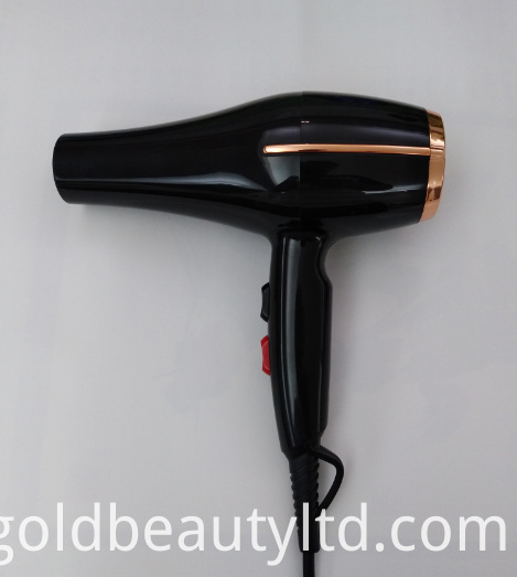 Ionic Professional Salon Hair Dryer