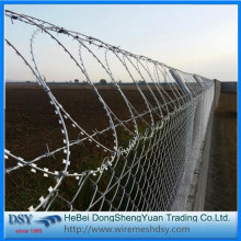 galvanized flat security fencing razor barbed wire