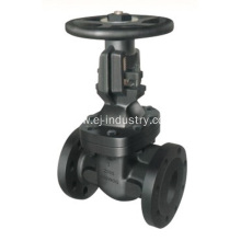 MSS SP 70 Gate Valve