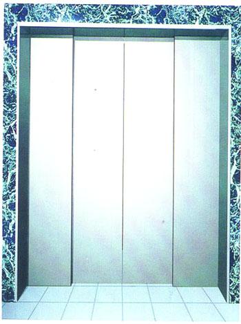 Elevator Decoration Two Speed Center Opening Landing Door